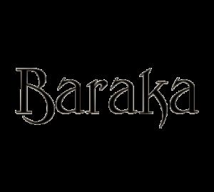 LOGO_BARAKA_WEB_N